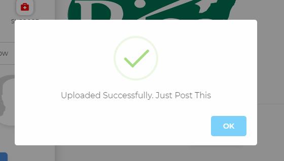 image upload successful