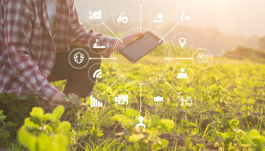 Who Benefits When Farmers Defend Technology?